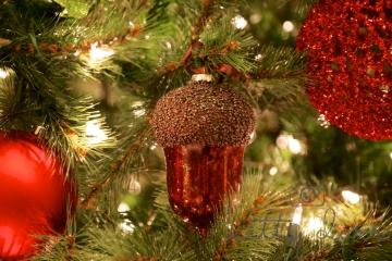 AGD Christmas 016